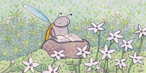 ninacrittenden_ladybug