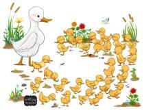 joysteuerwald_24-ducklings-sm
