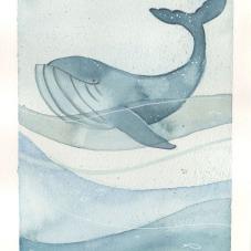RobertaRossetti_The whale