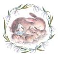 Jennifer Bell – fairy-rabbit-jennifer-a-bell