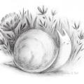 Jennifer Bell – jennifer-a-bell-snail